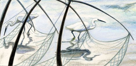 Egrets fishing, The Boatman's Knot, Rowena Riley